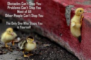 perseverance-quotes-6